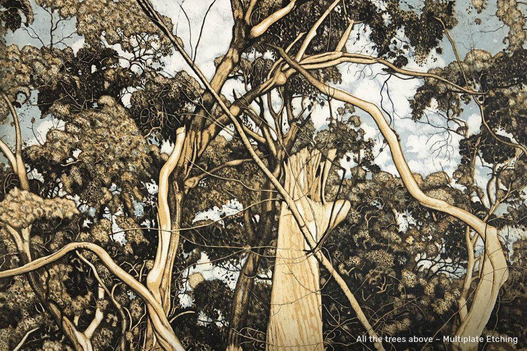 The Tangled Wood – David Frazer